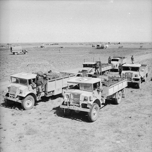 Click image for larger version  Name:The_British_Army_in_Tunisia_1943_NA1783.jpg Views:9 Size:94.8 KB ID:74140