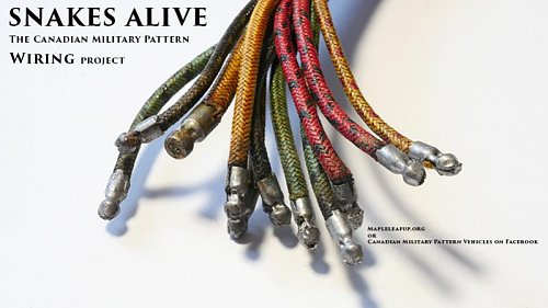 Click image for larger version  Name:Snakes Alive title.jpg Views:48 Size:43.8 KB ID:70681